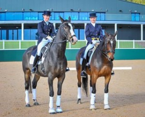 Pair of Dressage horses and riders dressage photography